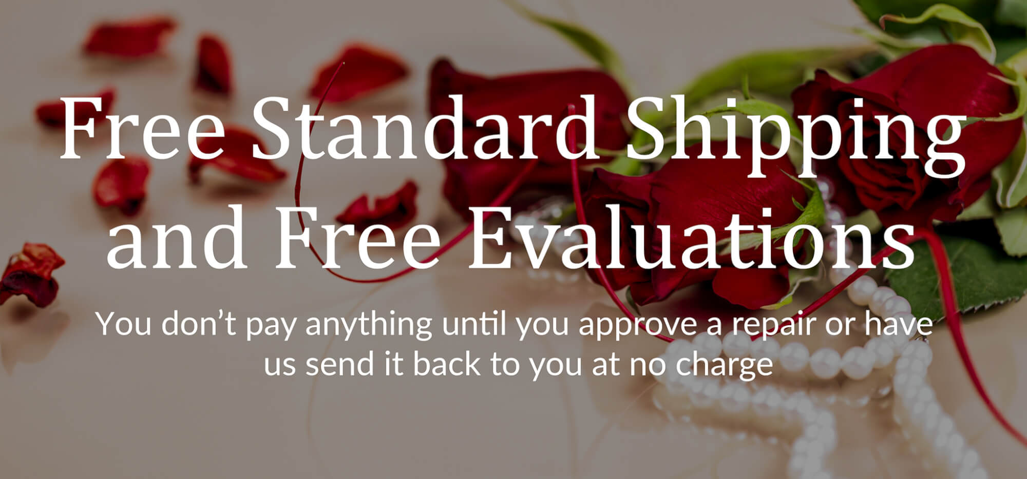 Banner Showing Free Evaluations & Shipping